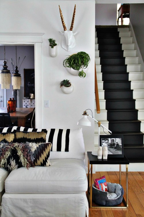 House plants on a white wall