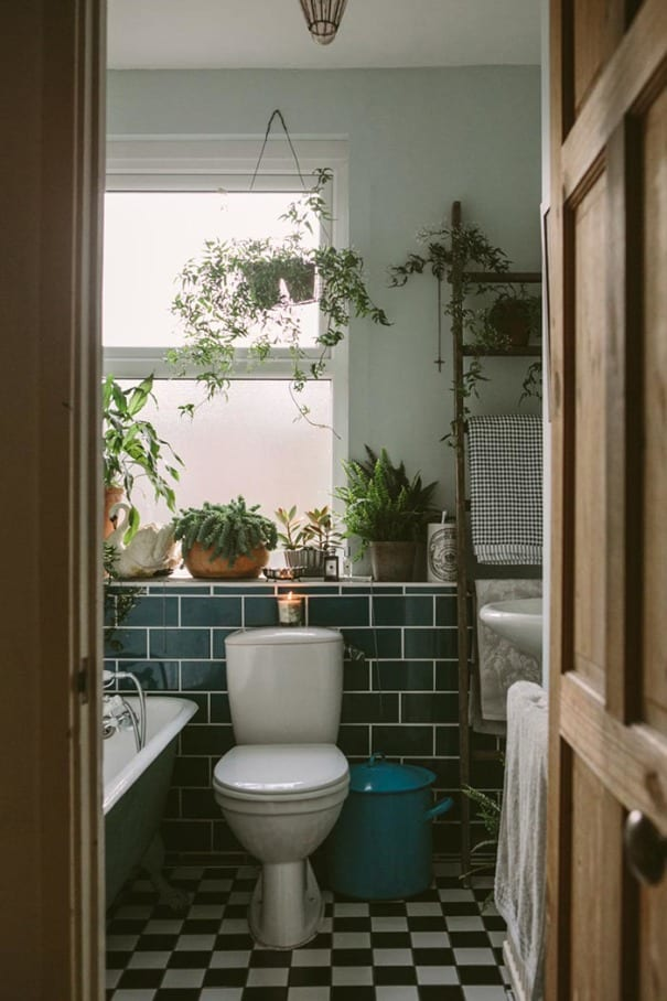 Homes with House Plants, house plants in a bathroom