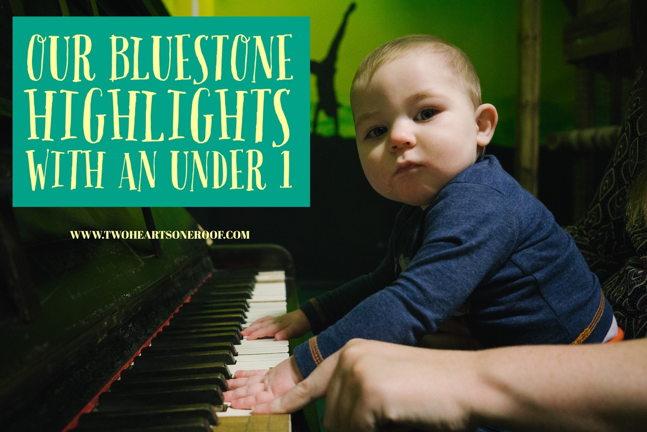 Our Bluestone Highlights with an Under 1