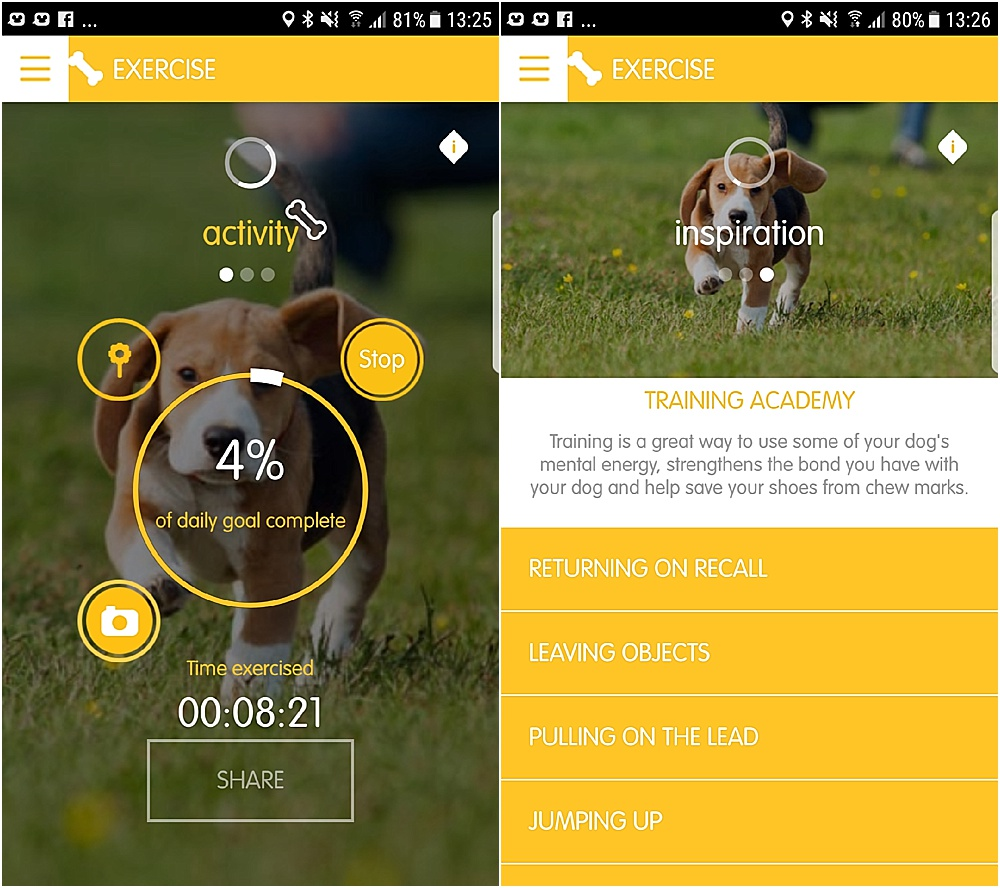 pedigree tracks app - dog fitness app