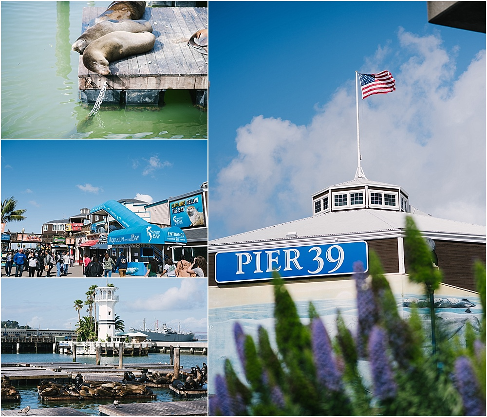 places to visit in San Fransisco with kids - pier 39